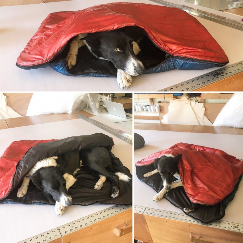 dog bivy nunatak equipment